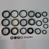 Cens.com PRO JOINT INTERNATIONAL CO., LTD. Oil Seals