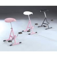 Cens.com 松誼實業股份有限公司 健身腳踏車